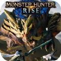 怪物猎人rise
