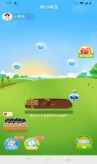 红包果园app