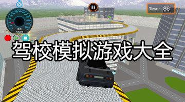 驾校模拟游戏大全