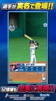 职业棒球锦标赛