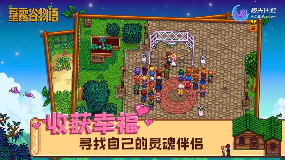 星露谷物语中文版